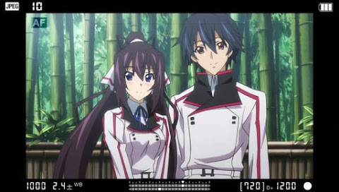IS: Infinite Stratos 2 Episode 11 Subtitle Indonesia