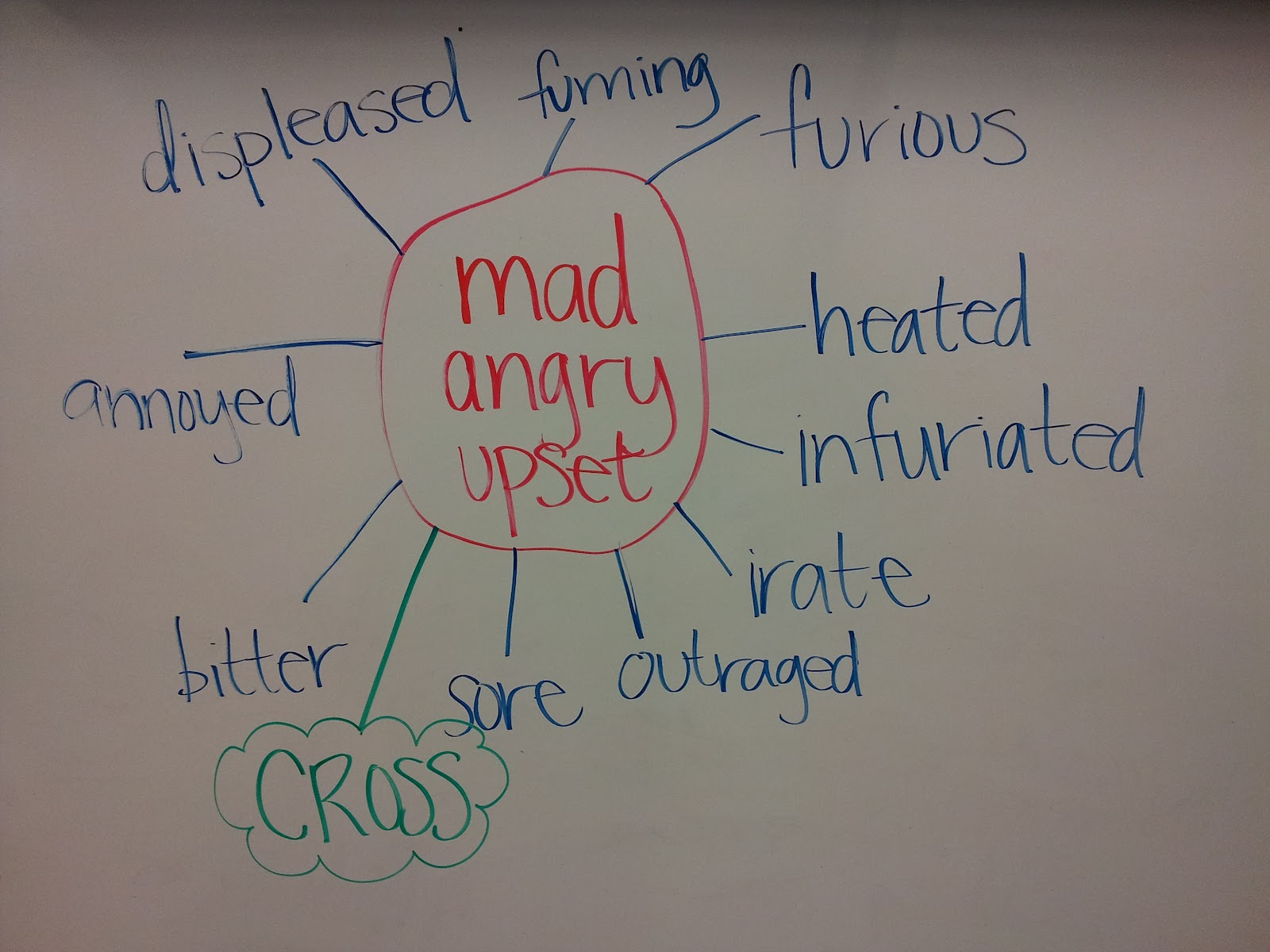 The magic finger by roald dahl grammar gumbo i put mad angry and upset in the center of a spider diagram and i added synonyms as the legs ccuart Images