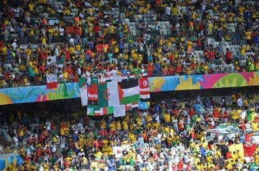 الجزائيون يرفعون أعلام الدول العربية في البرازيل