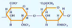 About ivermectin