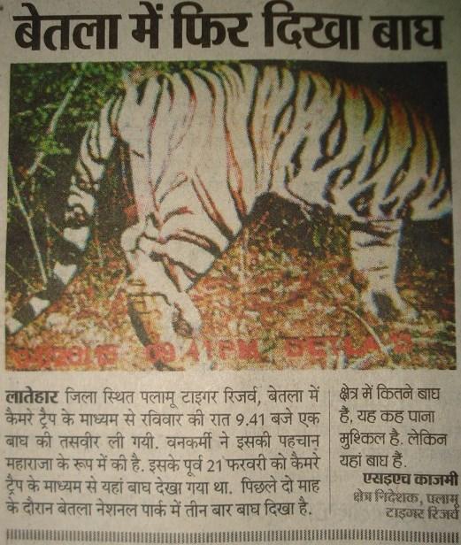 Palamau tiger reserve bet labs