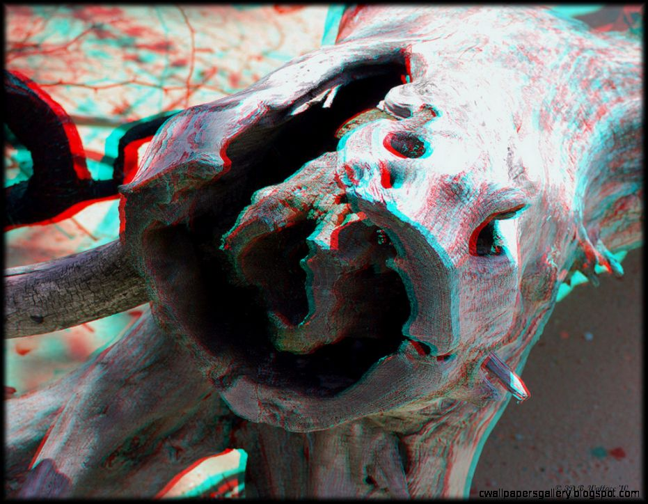 Eye Popping Anaglyph 3D Images « DesignGet