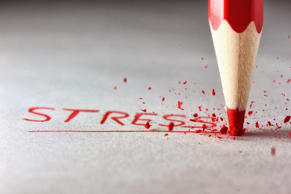 En las entrañas del estrés