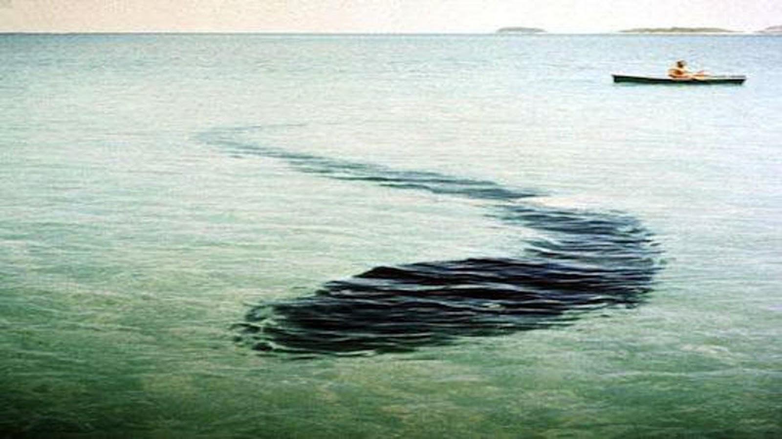 змея подводная лодка