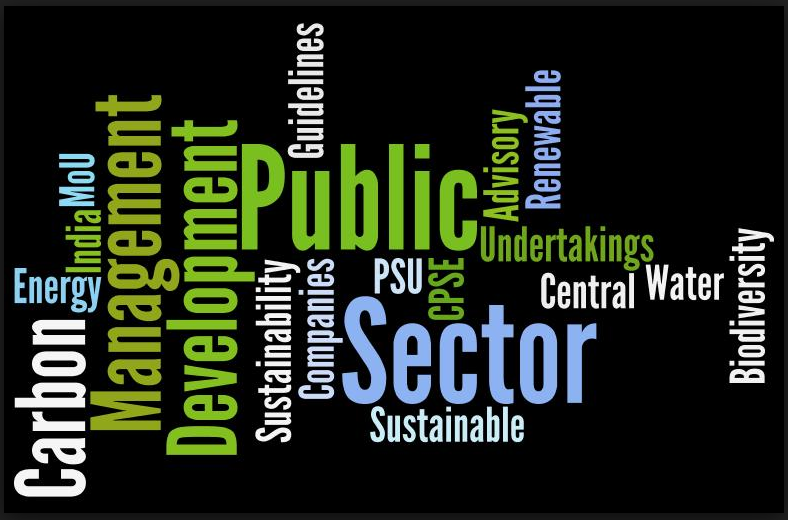 what is public enterprise This special issue on service innovation and service quality in the public sector  of public enterprise half-yearly journal includes five research articles by.