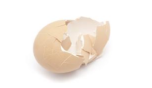 A casca de ovo tem cálcio e magnésio