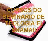 SEMINARIO EL SHAMAH