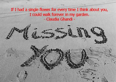 Missing+You+Quotes.jpg