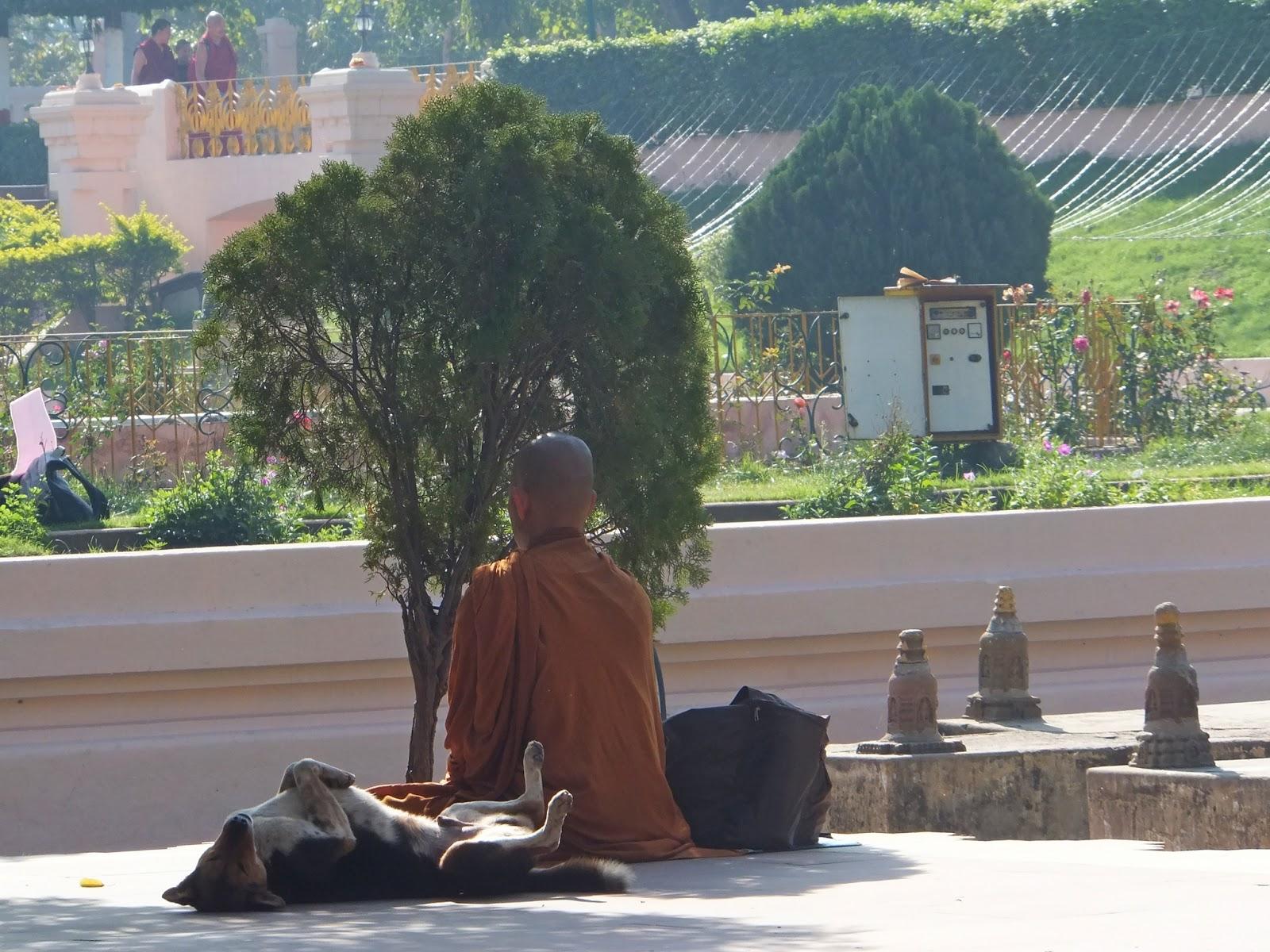 Буддисты индусы одеты в одежды цвета охры, а тибетцы в маруновые одеяния