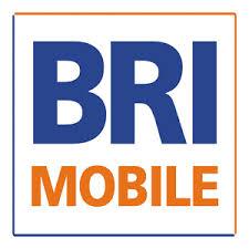Daftar Pinjaman Bank BRI 2015