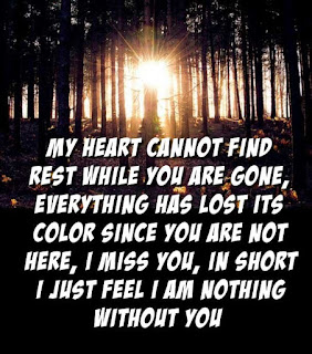 I Miss You Quotes for Her Valentines day