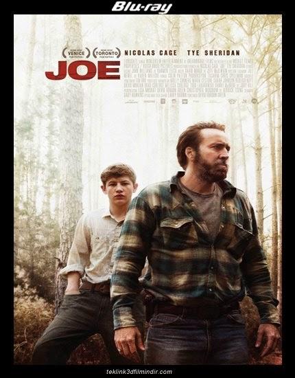 Joe (2013) afis