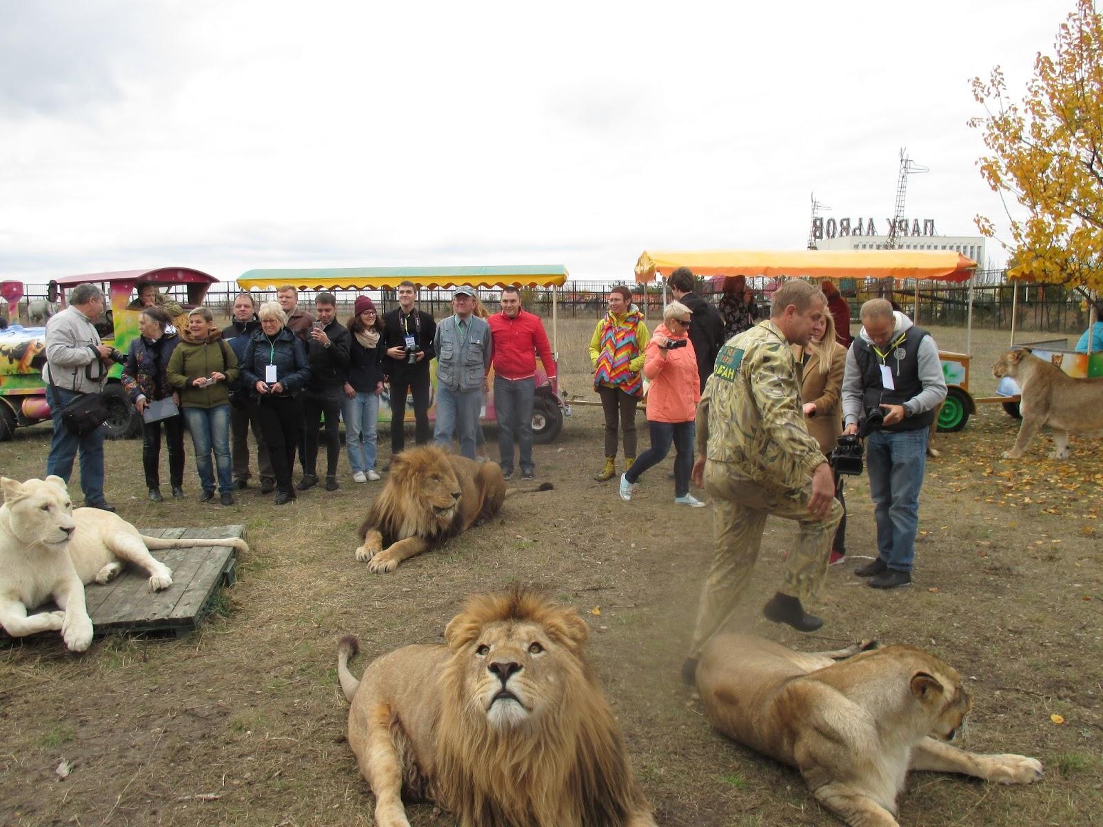 парк львов тайган в крыму фото