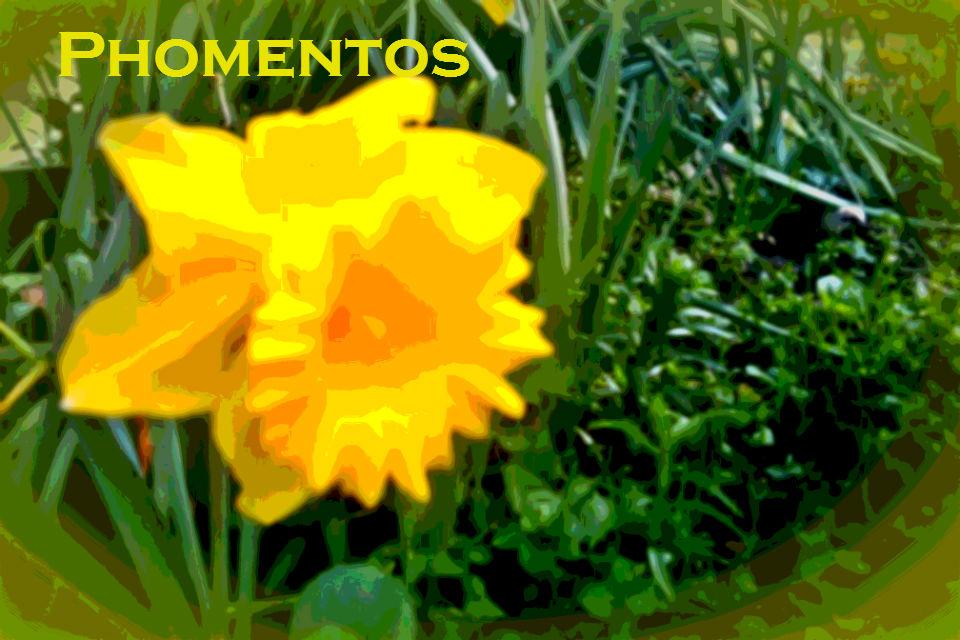 Phomentos