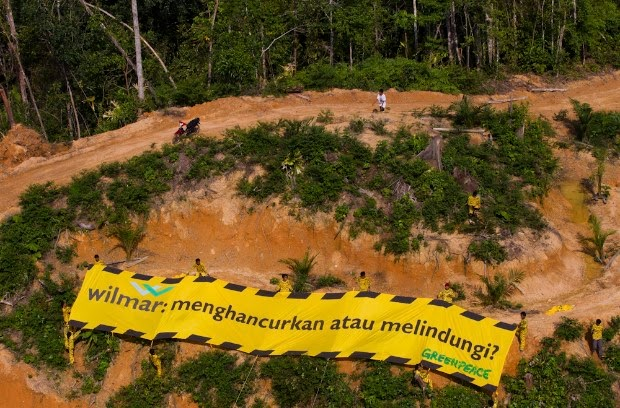 Selebriti Internasional Suarakan Pelestarian Hutan Indonesia