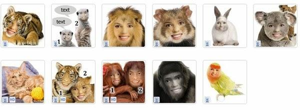 Coloque seu rosto em animais