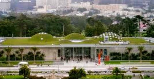 Donna Antonucci Green roof