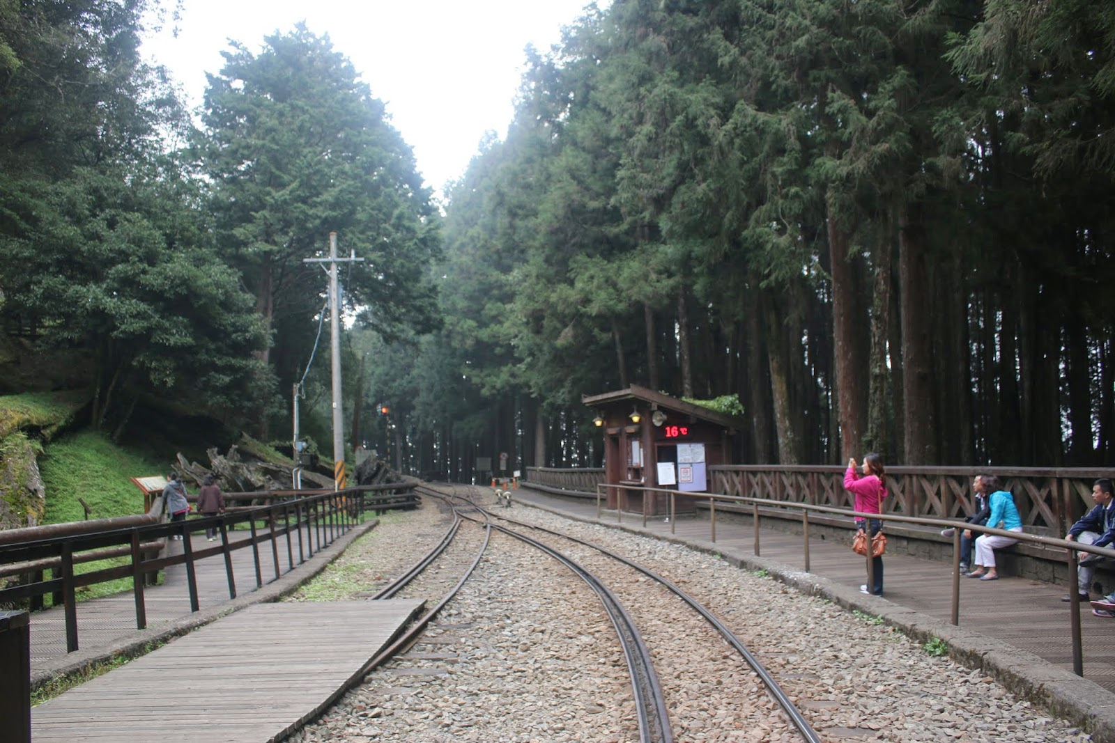 Waiting for the train back to the main station of Forest Railway Alishan Station at Alishan Mountain in Chiayi County of Taiwan