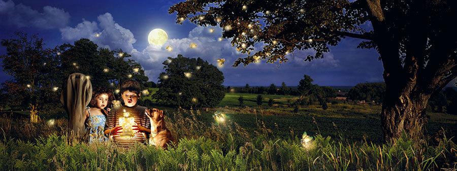 Granny Mountain Fireflies
