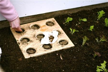 Eat Live Grow Paleo Square Foot Gardening Planting