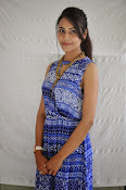 Khenisha Chandran at Jaganatakam press meet-thumbnail-11