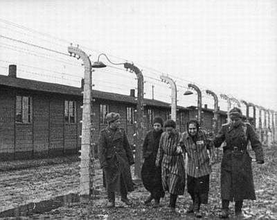 A libertação dos campos de concentração e extermínio passo a passo