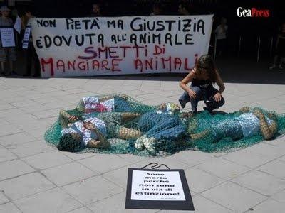 alcuni attivisti simulano la morte dei pesci per soffocamento e schiacciamento nella rete