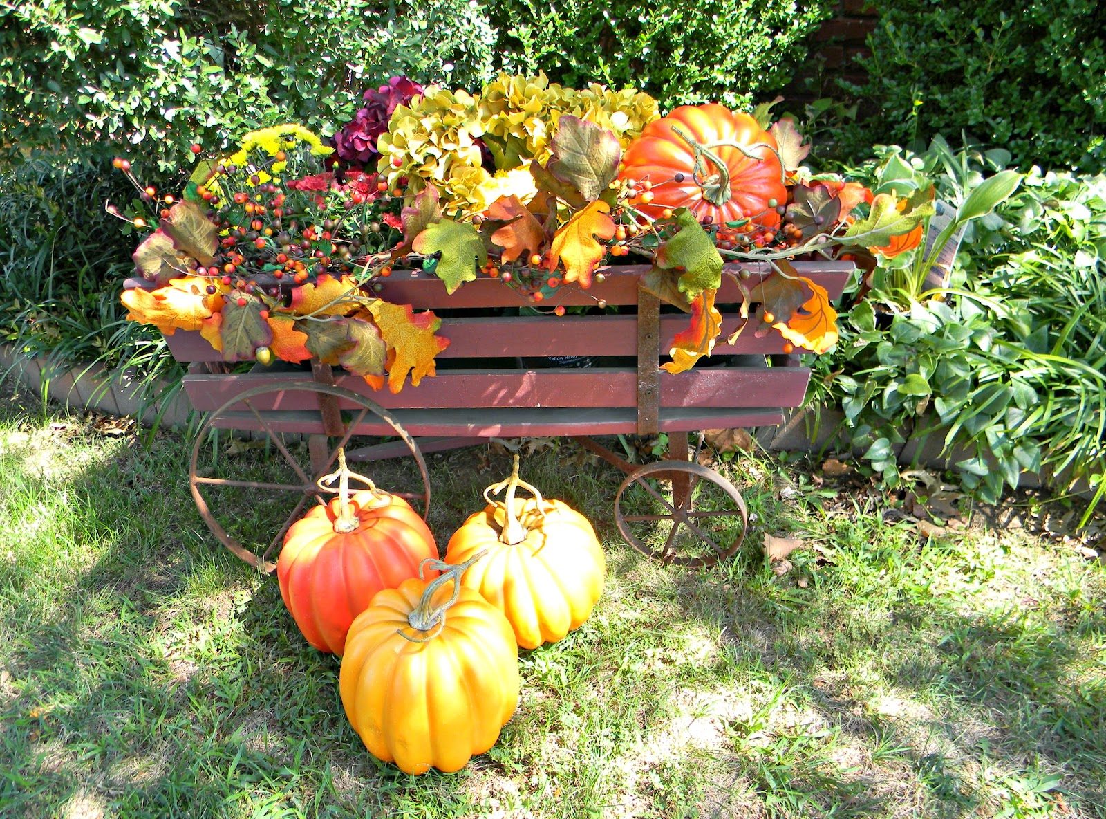 Dorothy Sue and Millie Bs too Fall Container Gardening