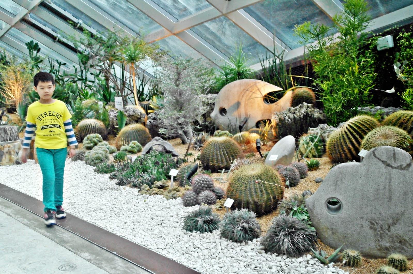 Garden By The Bay Flower Dome meheartseoul | ~sweet memories~: [gardensthe bay] - grandeur