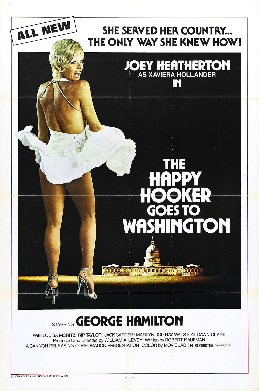 http://3.bp.blogspot.com/-8NKwPITB7eo/T4uK3-CB6NI/AAAAAAAAEWM/o6BCYQqq7T8/s1600/happy_hooker_goes_to_washington_poster_01.jpg