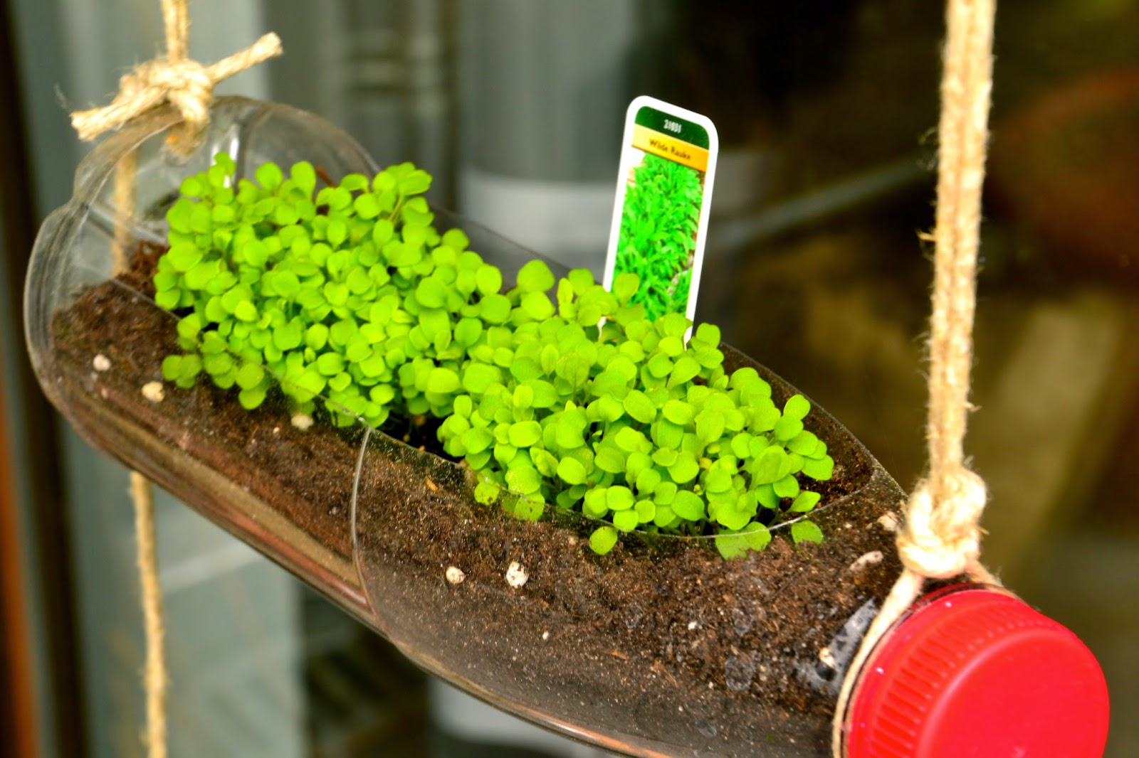 Proyecto universal apertura del alma jard n vertical for Cobertizo de plastico para jardin