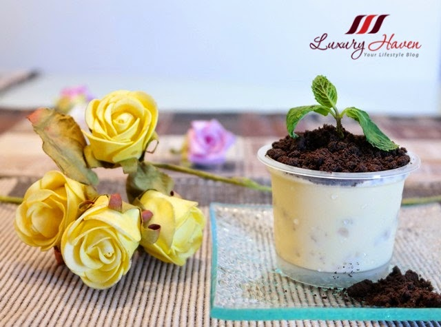 making oreo cookies potted plant desserts