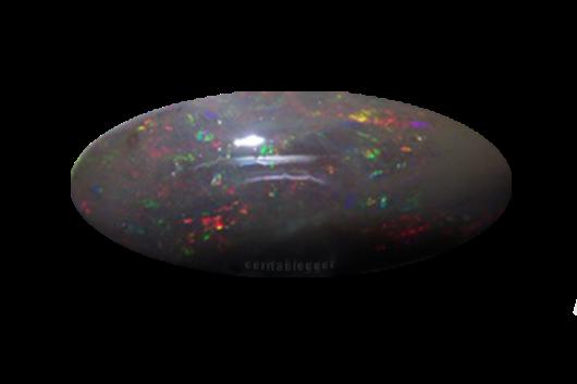 cara-mempercepat-jarong-black-opal-keluar
