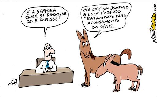 Mundo Animal. jumento