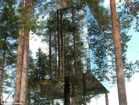Hotel Nyentrik di Tengah Hutan