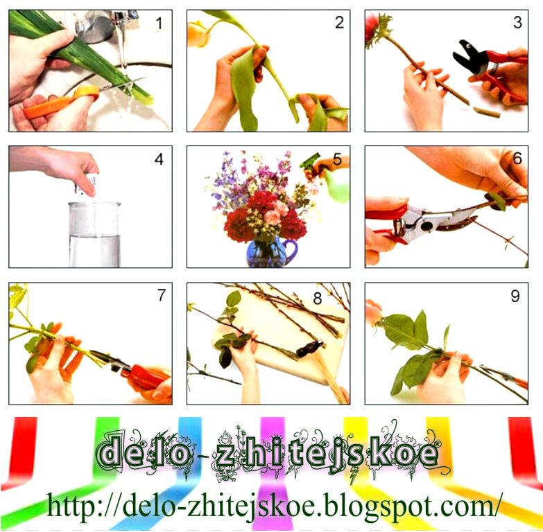 Как сделать так чтобы цветы стояли дольше  845