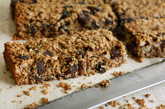 Low Fat Chewy Granola Bars with Pecans Raisins and Chocolate ...