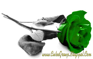 Green roseWallpaper 2