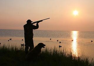 Fucili Benelli per la caccia e il tiro sportivo