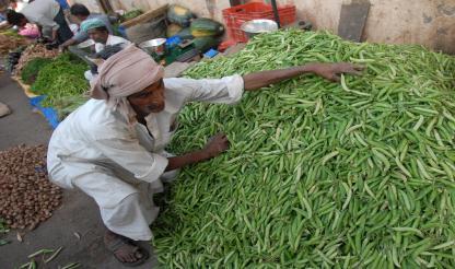 São Tomé e Príncipe: Banco Mundial financia plano de desenvolvimento agrícola