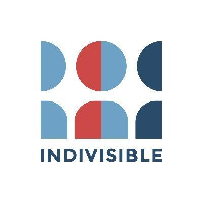 Link to the INDIVISIBLE GUIDE