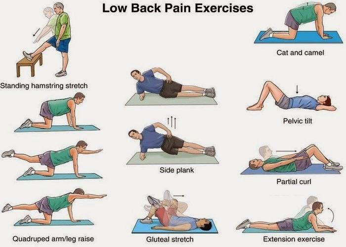 øvelser for ondt i ryggen