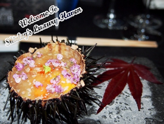 dbs supperclub mikuni fairmont hokkaido sea urchin jelly