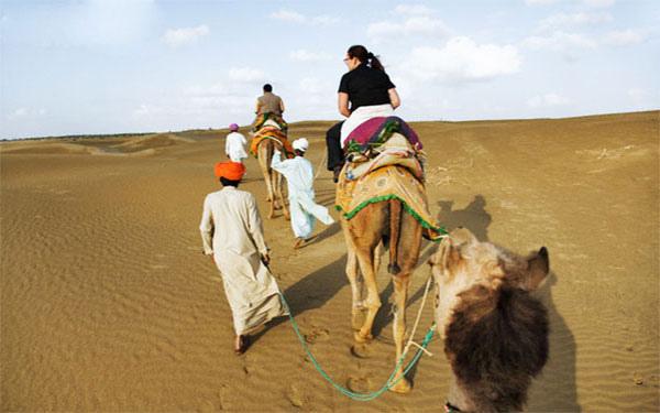 A camel safari, Jodhpur