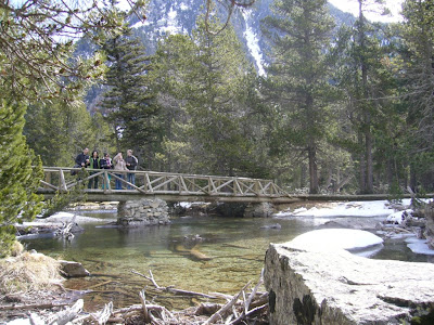 Wooden bridge in Aigüestortes National Park