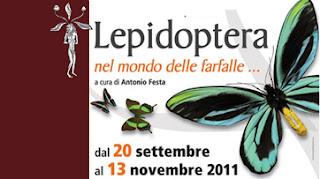 lepidottera-giardini-minerva-salerno