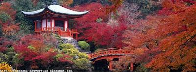 Une magnifique photo couverture facebook automne