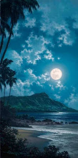 Waikiki Beach Hawaii (Best Honeymoon Destinations In USA) 7