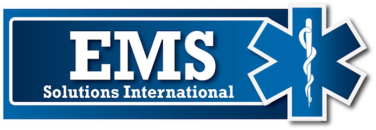 EMS SOLUTIONS INTERNATIONAL