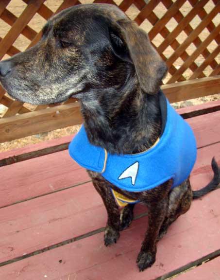 star_trek_crafts dog_costume star_trek_dog_costume